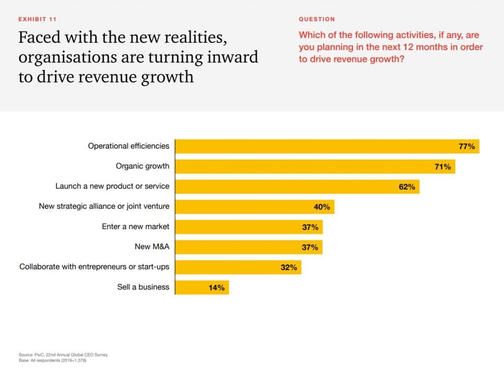 What will drive revenue growth in 2019 - CEO insight